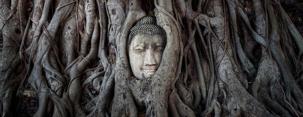 illuminazione-buddha